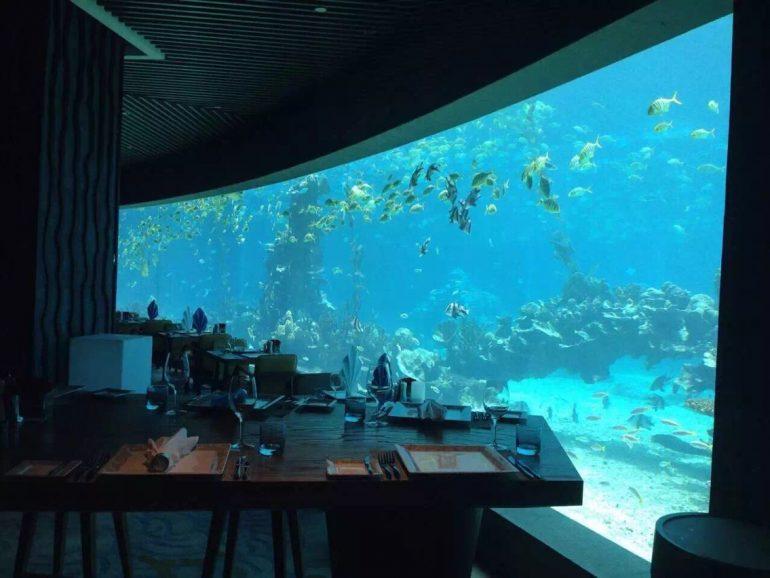 Acrylic Aquarium 1