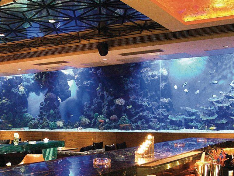 HOTEL ACRYLIC SQUARE AQUARIUM FISH TANK