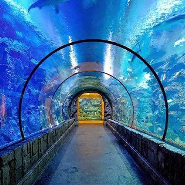 Beautiful Aquarium Large Acrylic Tunnel