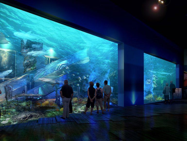 Acrylic Aquarium 4