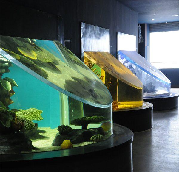 Acrylic Aquarium 6