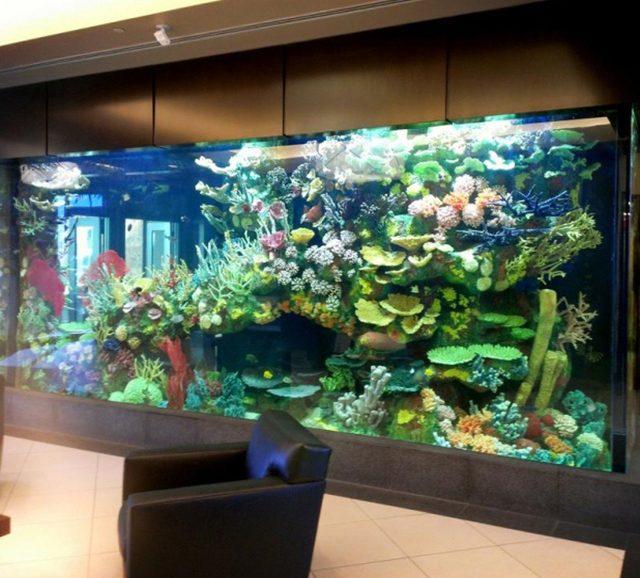 DA LUXURY MODERN DESIGN ACRYLIC FISH TANK AQUARIUM